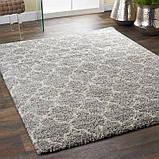 Химчистка ковров на дому, фото 5