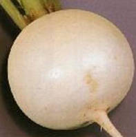 Семена Репа Снежный Шар (столовая)