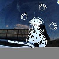 3D Авто Наклейка Автоtoon Собака Передвижные задние стеклоочистители Отражающие надписи