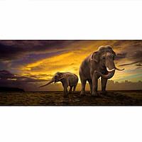 Слон рассвета крест пейзаж алмазов стежка DiY новые алмазные 5d картины