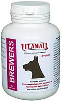 Витамины VitamAll (ВитамОлл) пивные дрожжи с чесноком,для красоты шерсти у собак крупных пород, 65 табл.