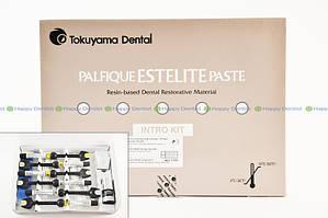 Palfique ESTELITE Paste (Палфигью Эстелайт Паст) набор