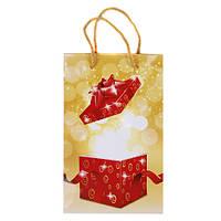 """Пакет подарочный """"Волшебство"""" ламин. 16,5*26*7см 1392"""