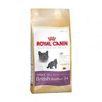 Royal Canin (Роял Канин) KITTEN BRITISH SHORTHAIR корм для котят британских короткошерстных, 10 кг