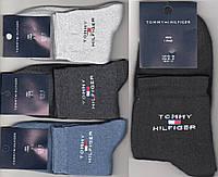 Носки мужские спортивные махровые х/б Tommy Hilfiger, средние, ассорти, 41-45 размер, 11105