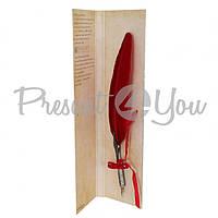 Перо для каллиграфии (красное перо), 8х33 см Dallaiti (127-0032)