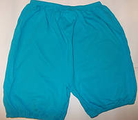 Панталоны с начесом р 60-62  арт3610