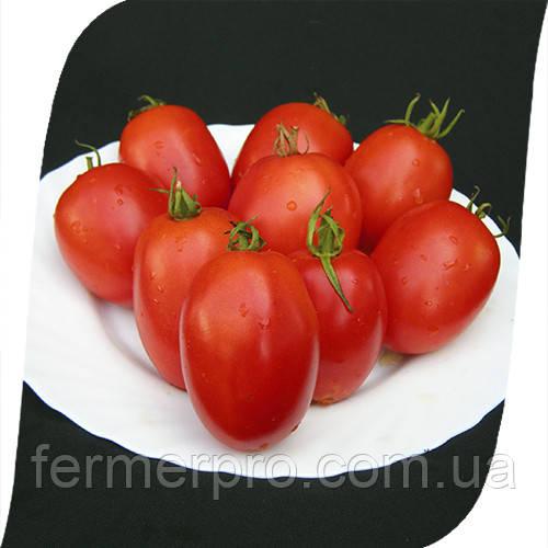 Семена томата  Велоз F1 \ Veloz F1 1000 семян Seminis