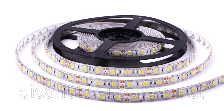 Светодиодная  LED лента  SMD 5050 60Led /м 14.4W/м  белый холодный  12V  IP65  5м