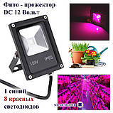Фито прожектор 10 Вт 12 Вольт  водостойкий для гидропоники, теплиц, растений, фото 3