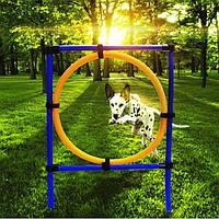 Тренировки собаки прыжок обруча домашнее животное кошка игры на открытом воздухе оборудование тренировки, подготовку маневренности посл