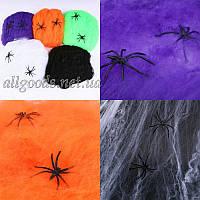 Паутина декоративная + 2 паука