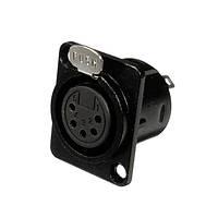 XLR женская панель Гнездо крепления разъема 5-контактный никель про аудио-разъем аудио-штекер