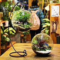 Хонана HG-GD1 DIY Micro Пейзаж завод Стекло подвесной бал с железной стойкой Домашнее украшение