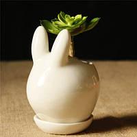 Мини-керамическая форма кролика суккулентов цветочный горшок сад поделки растение в горшке украшение цветочного горшка