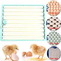 220 куриные яйца Инкубатор Automatic Duck перепела Птица домашняя птица яйца Инкубатор Tray