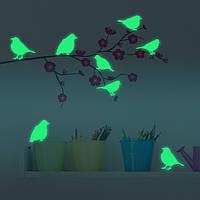 8PCS Honana Флуоресцентные Glow Птицы стикер стены Home Decor Спальня