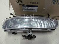 Фара противотуманная правая на Hyundai Accent 2006г.-2010г. (пр-во Mobis Hyundai\Kia)