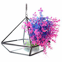 Треугольник парниковых diy микро пейзаж стекло террариума сочные растения цветочный горшок