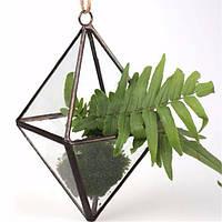 DIY микро пейзаж призматических парниковых стекла террариум сочные растения цветочный горшок
