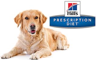 Presciption Diet - терапевтическое питание собаки