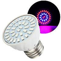 E27 5w LED светать посадки цветок Лампа гидропоникой полный спектр