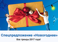 """Спец предложение """"Новогоднее"""""""
