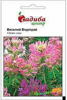 """Семена  цветов клеома """"Веселый фонтан"""" 0.3 г, """"Садыба центр"""", Украина"""
