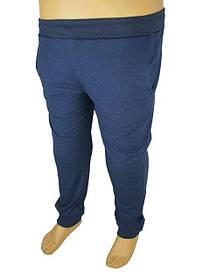 Спортивні штани великих розмірів