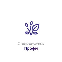 Спецпредложения пакет услуг «Профи»
