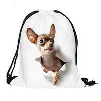 Собака бежать 3d печати шнурком мешок тренажерный зал спортивный рюкзак на открытом воздухе досуг Mochila