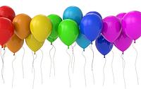 Открытие официального сайта/интернет-магазина LIFEX