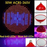 50w E27 640 красный 160 синий сад рост красный завод LED лампа парниковых завод саженец свет