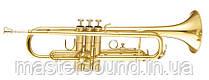Труба Maxtone TTC30L (TTC1C)