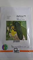 Семена огурца Афина F1 (Nunhems), 100 семян — ранний гибрид (38-40 дней), партенокарпик