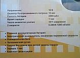 Шуруповерт аккумуляторный РОСМАШ АШ-18/2, фото 2