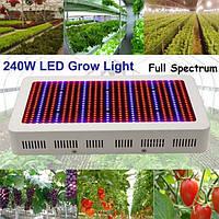 240W садоводства Полный спектр LED Завод расти рассада лампы свет парниковых растений