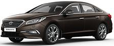 Защита двигателя Hyundai Sonata LF (2014-2019)