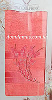 Махровое полотенце в подарочной упаковке 90*140 см TWO Dolphins, Турция 0159