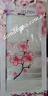 Махровое полотенце в подарочной упаковке 90*140 см TWO Dolphins, Турция 0166