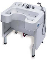 Ванна для верхних конечностей BTL-3000 ZETA