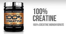 Creatine 100% Scitec Nutrition 1000 г, фото 2