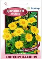 """Семена цветов Дороникум """"Титтл Лео"""", многолетнее, 5 шт, """"Benary"""", Германия"""