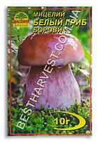 Мицелий «Белый гриб Боровик» 10 г