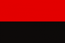 Прапор ОУН, УПА, атласный 150х225см, фото 3