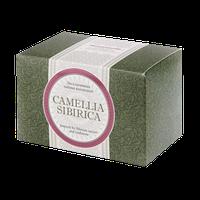 Купить Чайный напиток, Заказать Чайный напиток с саган-дайлей, Цена Camellia sibirica