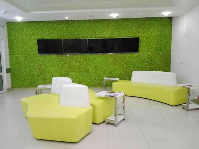 Декор стен стабилизированными растениями