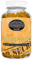 Витамины и минералы Orange Triad (270 tabs)