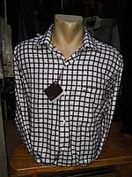 Рубашка мужская Recobar в клетку