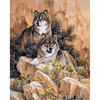 "Картины раскраски по номерам ""Волки"" набор для творчества"